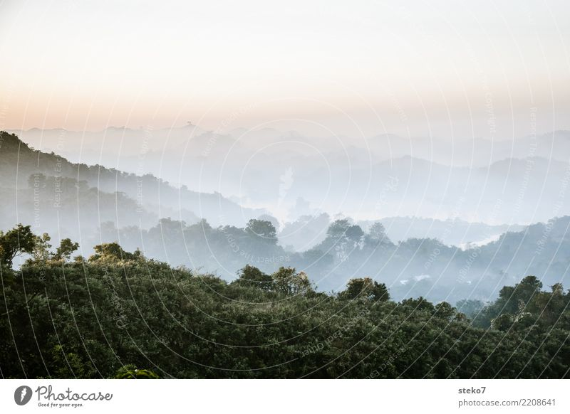Morning fog in Myanmar Fog Mountain Relaxation Optimism Vacation & Travel Calm Mrauk U Rakhaing New start Subdued colour Exterior shot Deserted Copy Space top
