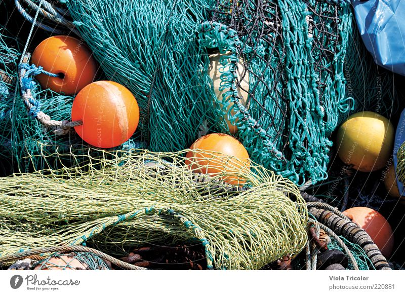 Baltic Sea Network Profession North Sea Round Blue Yellow Green Still Life Fishing net Colour photo Exterior shot Close-up Fishery Professional life