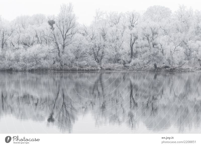 SOON Winter Nature Landscape Snow Forest Lakeside Cold Black White Calm Sadness Bizarre Loneliness Climate Surrealism Symmetry Grief Environment Irritation
