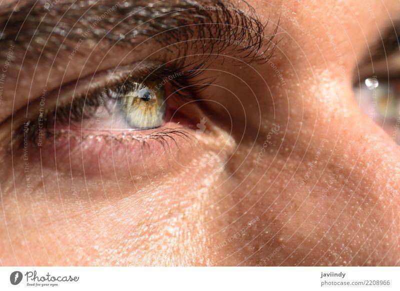 Close-up shot of man's eye Beautiful Human being Man Adults Eyes Blue Green close Vision Iris Eyebrow Vantage point pupil Colour photo Macro (Extreme close-up)