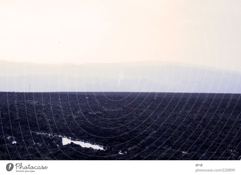 ___ Earth Field Horizon Loneliness Empty Doomed Freedom Infinity Gloomy Black Fallow land Plow Agriculture Copy Space top Bleak Sowing Floor covering Fog