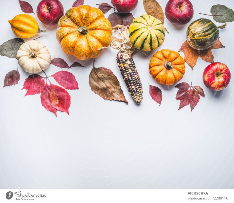 autumn background with pumpkin, corn, apples and leaves Vegetable Apple Style Design Healthy Eating Garden Feasts & Celebrations Thanksgiving Hallowe'en Nature