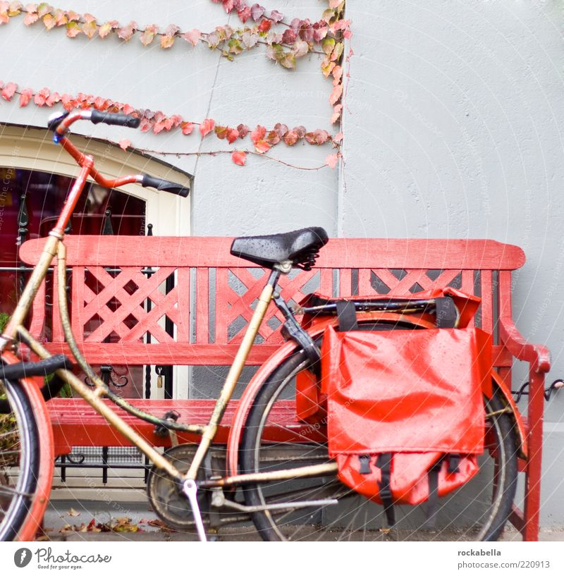 Red Autumn Bicycle Facade Esthetic Bench Athletic Mobility Wheel Vehicle Autumn leaves Seating Bag Bicycle frame Autumnal Means of transport