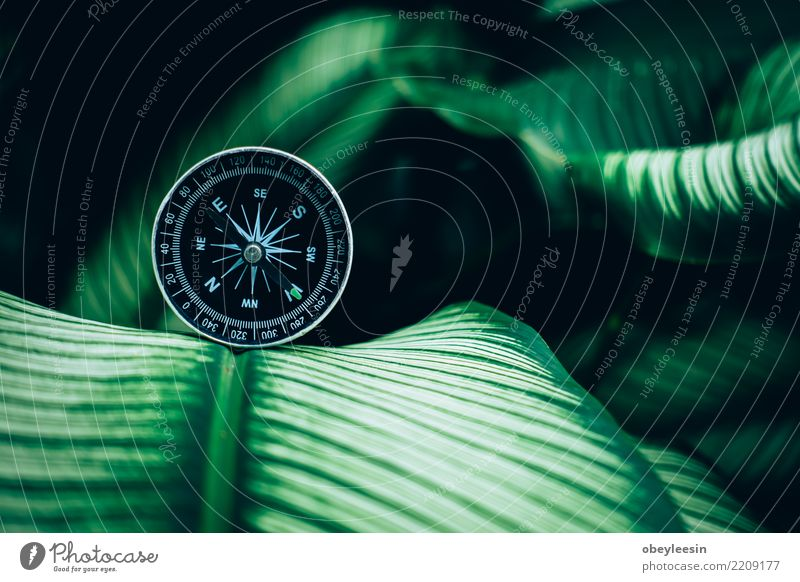 compass concept for find the nature in your life Human being Nature Vacation & Travel Hand Ocean Mountain Lifestyle Lanes & trails Coast Tourism Trip
