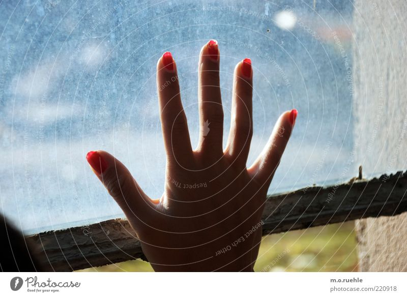 Human being Hand Youth (Young adults) Red Loneliness Emotions Window Sadness Wait Glass Fingers Hope Longing Goodbye Window pane Expectation