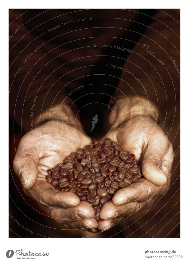 Hand Nutrition Work and employment Brown Village Café Beans Legume
