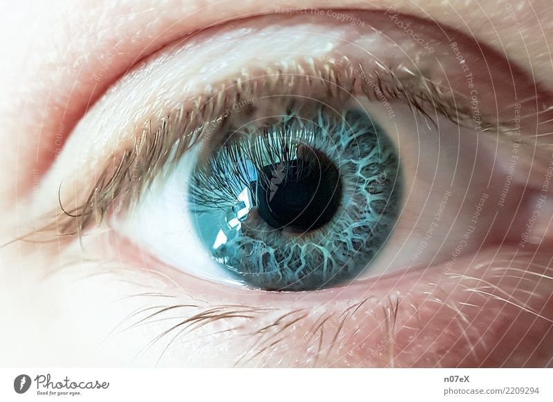 behind blue eyes Beautiful Camera Masculine Man Adults Eyes Art Water Looking Dream Authentic Uniqueness Near Original Blue Emotions Truth Whimsical