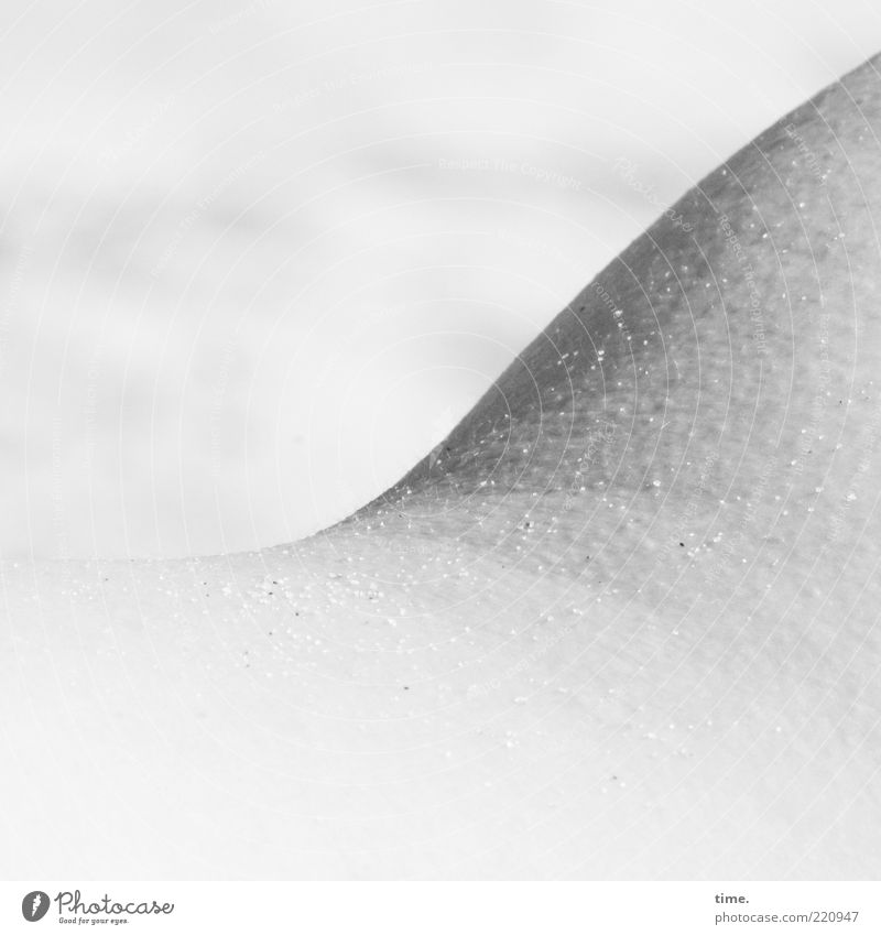 Beach Gray Sand Bright Background picture Skin Freeze Curve Progress Section of image Partially visible Curved Parts of body Gooseflesh Salty Grain of sand
