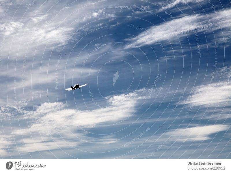 Sky Clouds Above Movement Freedom Air Contentment Airplane Elegant Flying Tall Speed Esthetic Aviation Leisure and hobbies