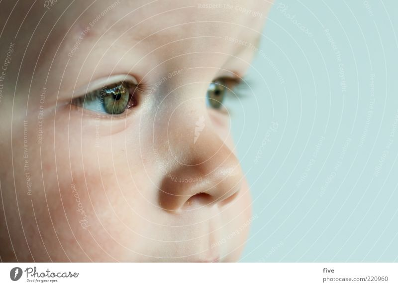 Human being Child Green Beautiful Eyes Emotions Boy (child) Head Small Happy Dream Infancy Contentment Nose Happiness Future