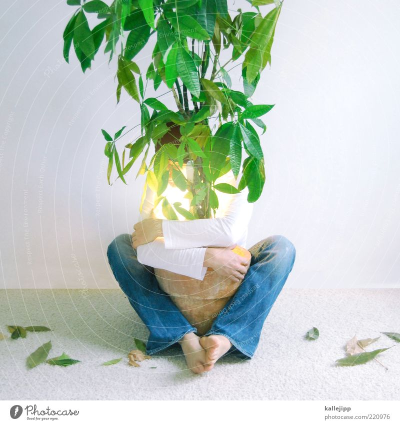 Human being Nature Man Tree Plant Leaf Adults Environment Friendship Climate Masculine Symbols and metaphors To hold on Protection Jeans Ecological