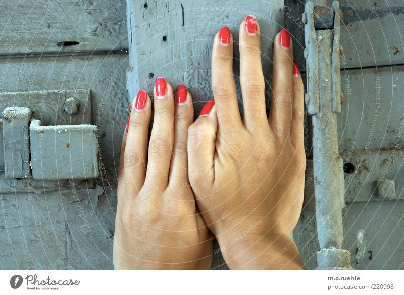 delicately obstructed Human being Feminine Young woman Youth (Young adults) Hand Fingers 1 18 - 30 years Adults Wood Touch Beautiful Gray Determination