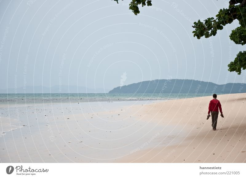 On the beach Vacation & Travel Freedom Summer vacation Beach Ocean 1 Human being Sand Bad weather Coast Jacket Going Loneliness Low tide Monsoon Colour photo