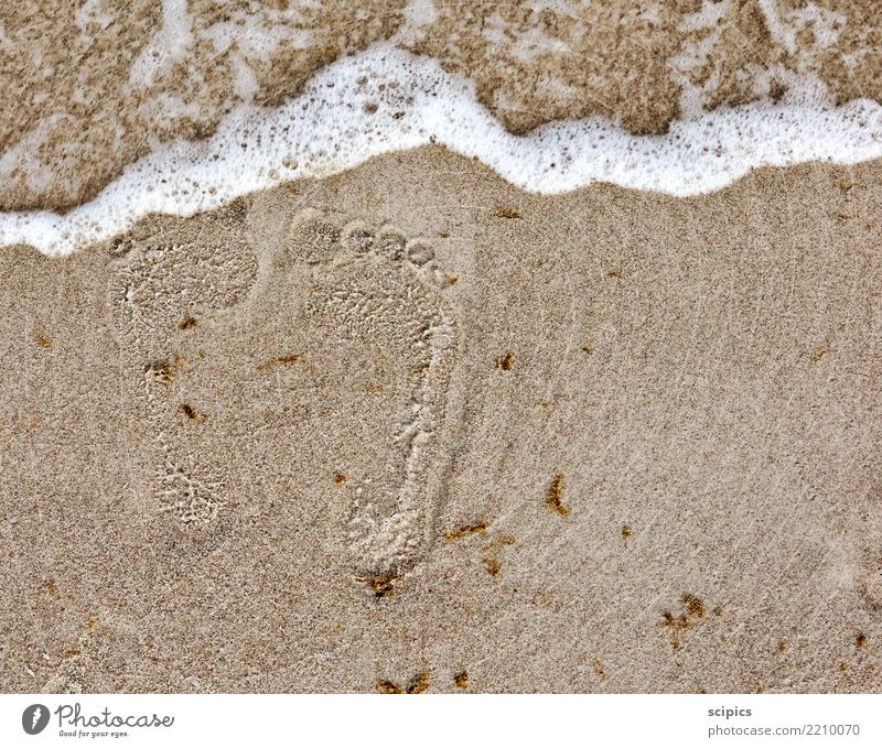 Traces in the sand Body Healthy Wellness Life Relaxation Calm Leisure and hobbies Summer Summer vacation Beach Ocean Waves Yoga Environment Nature Landscape