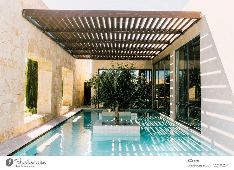 Summer Town Tree Ocean Relaxation Calm Architecture Building Design Modern Elegant Esthetic Fresh Arrangement Idyll Break
