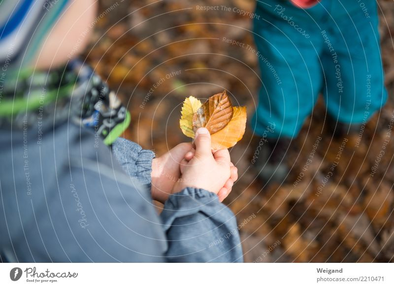 Three VIII Senses Leisure and hobbies Playing Kindergarten Child School Brothers and sisters To enjoy Simple Brown Yellow Humanity Solidarity To console