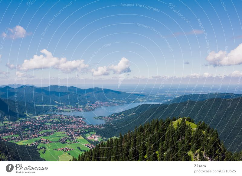 Tegernsee Mountain Environment Nature Landscape Sky Clouds Summer Beautiful weather Forest Alps Peak Lake Esthetic Far-off places Gigantic Large Blue Green