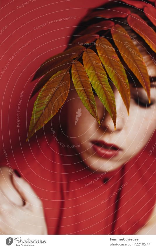 Woman Human being Nature Youth (Young adults) Young woman Beautiful Red 18 - 30 years Adults Autumn Feminine Hide Autumn leaves Autumnal Shoulder Concealed