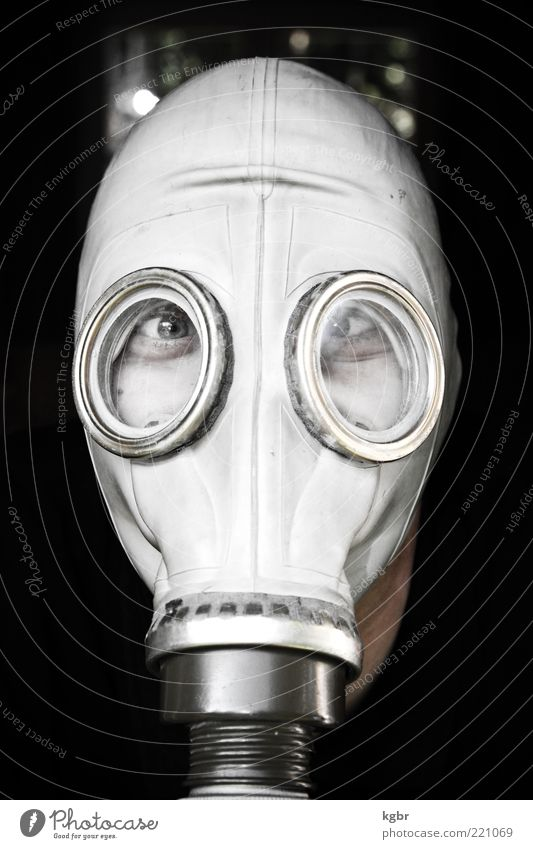 gas-masked Human being Head Face Eyes 1 Mask Exceptional Hideous Protection Fear Dangerous Bizarre Safety Surrealism Respirator mask Face mask Rubber