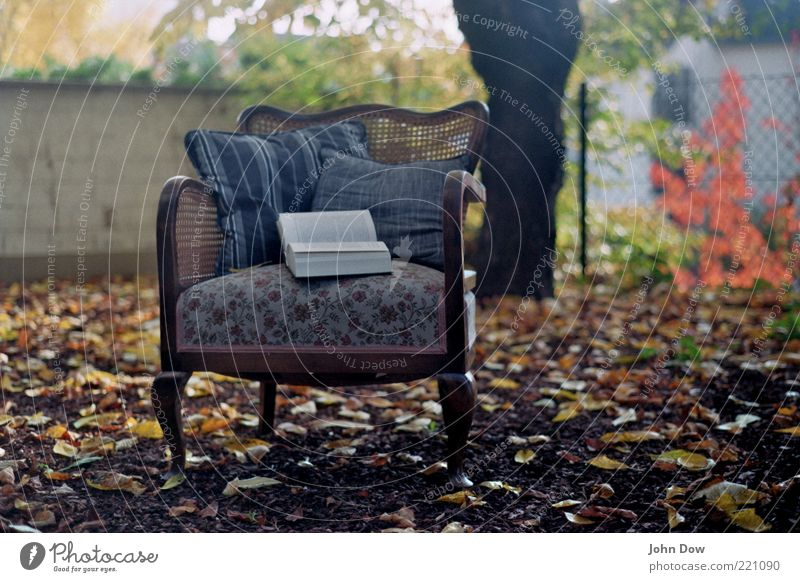 autumn whisper Garden Education Study Tree Bushes Deserted Armchair Cushion Book Cozy Freedom Leaf Idyll Nostalgia To leaf (through a book) Leafing through
