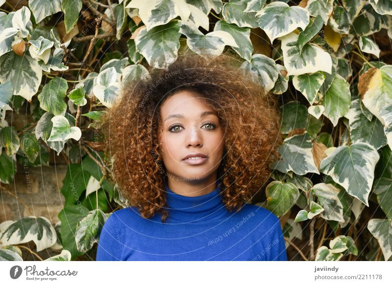 Beautiful young African American woman with afro hairstyle Lifestyle Elegant Style Hair and hairstyles Face Human being Feminine Young woman