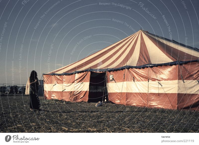 Summer Calm Leisure and hobbies Wait Beautiful weather Serene Entrance Tension Striped Expectation Anticipation Culture Alternative Circus Reddish white
