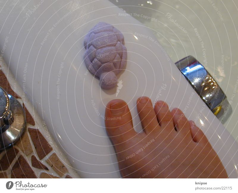 Feet Things Bathtub Toes Turtle