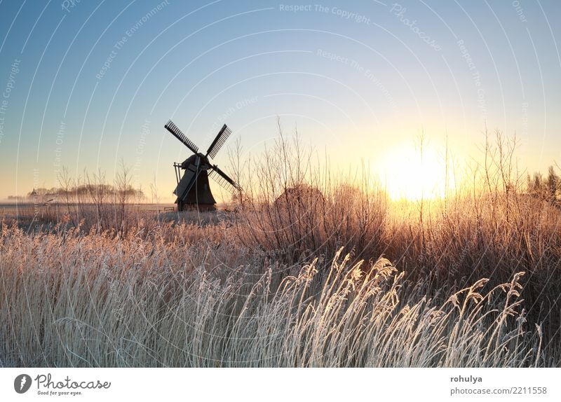 gold sunrise over Dutch windmill on frosty morning Vacation & Travel Sun Winter Nature Landscape Sky Sunrise Sunset Beautiful weather Fog Ice Frost Dream house