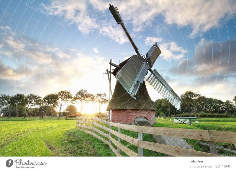 beautiful sunrise behind Dutch windmill Vacation & Travel Summer Sun Nature Landscape Sky Clouds Beautiful weather Grass Meadow Building Architecture Wood Old