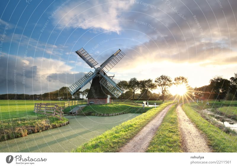 windmill, rural road and river at sunrise, Netherlands Beautiful Vacation & Travel Sun Environment Landscape Sky Clouds Summer Beautiful weather Grass Meadow