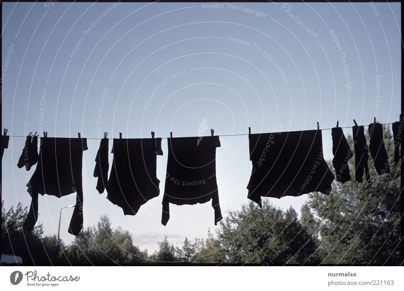 Black Environment Garden Living or residing Clothing T-shirt Clean Shirt Hang Stockings Cloudless sky Sweater Dry Clothesline Environmental pollution