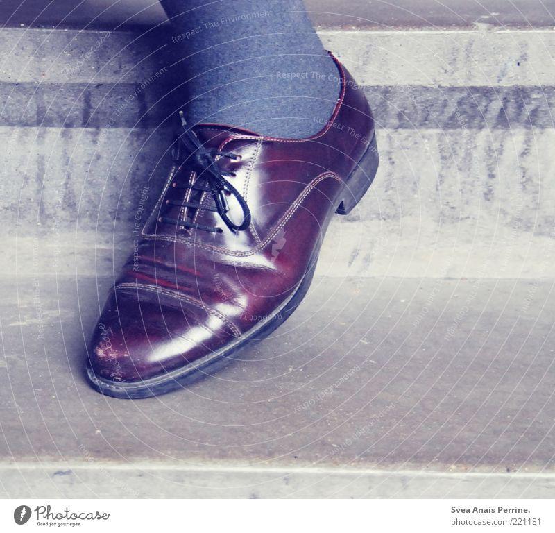old shoe. Elegant Style Legs Feet 1 Human being Stairs Fashion Leather Footwear Old Cool (slang) Mens shoe Leather shoes Vintage Colour photo Subdued colour