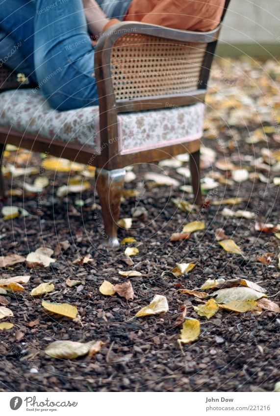 Autumn Whisper II Leisure and hobbies 1 Human being Garden Jeans Sit Historic Serene Calm Contentment Idyll Armchair Antique Relaxation Reading Leaf Autumnal