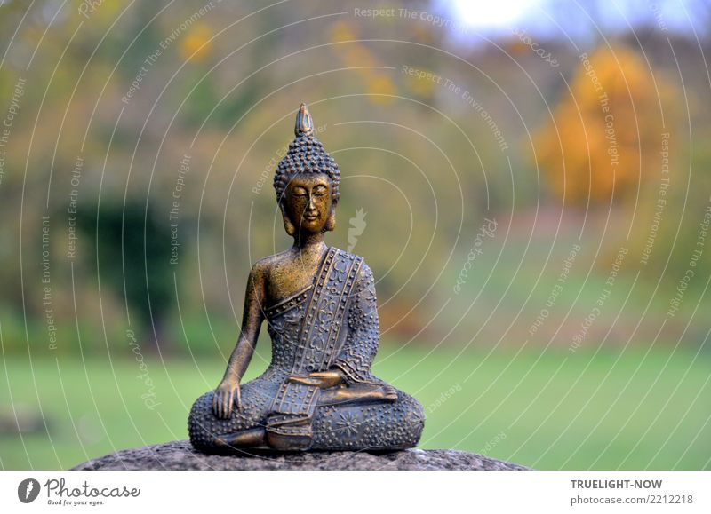 iTRASH! 2019 | ooohm.. Lifestyle Healthy Wellness Harmonious Well-being Contentment Senses Relaxation Calm Meditation Sculpture Culture Subculture