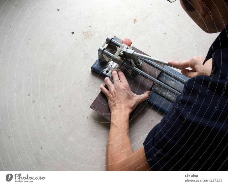 personal contribution Work and employment Craftsperson tile layers Construction site Craft (trade) Human being Masculine Man Adults Arm Hand 1 Tile tile cutter