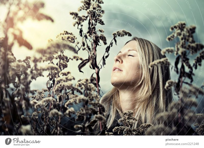 Nature Youth (Young adults) Beautiful Plant Face Relaxation Autumn Feminine Emotions Happy Dream Think Blonde Adults Romance Bushes