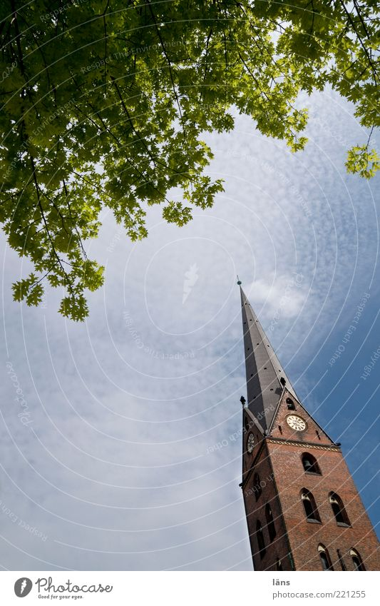 Sky Calm Leaf Clouds Think Religion and faith Meditative Beautiful weather Church Tilt Twigs and branches House of worship Church spire Church spire Veil of cloud Church tower clock