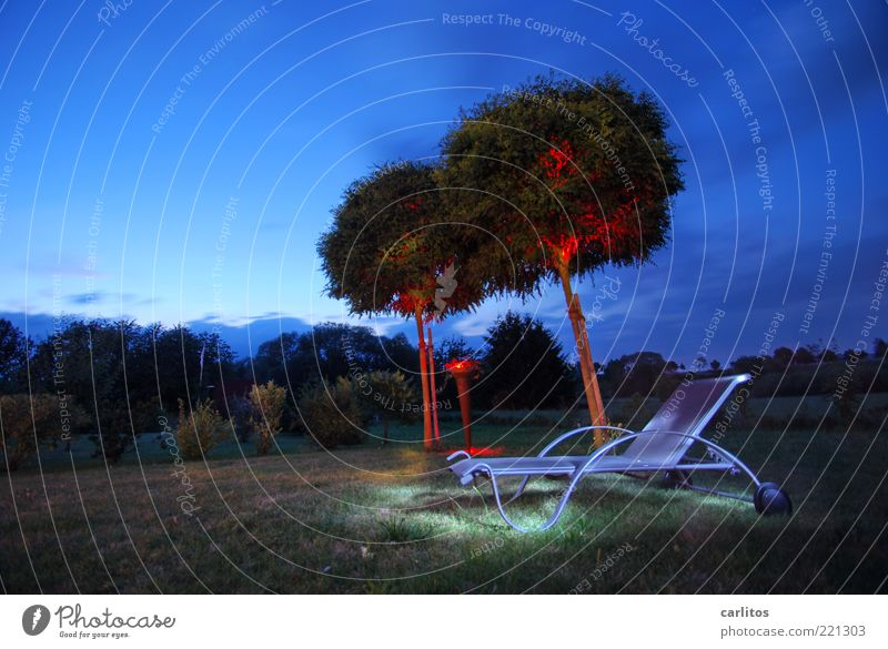 DARK WAR'S Sky Night sky Summer Beautiful weather Tree Garden Relaxation To enjoy Dream Esthetic Dark Blue Red Calm Couch Deckchair Visual spectacle Robinia