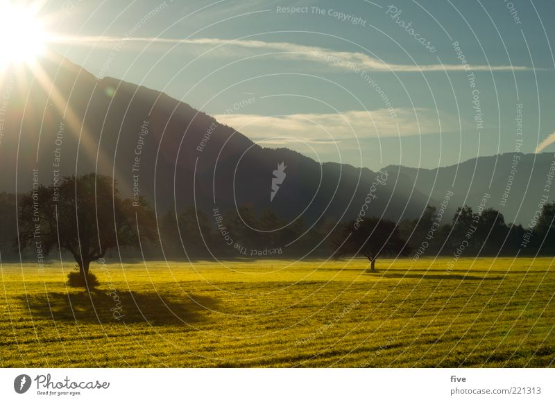 Nature Sky Tree Sun Plant Clouds Far-off places Forest Relaxation Meadow Autumn Mountain Warmth Landscape Moody Field