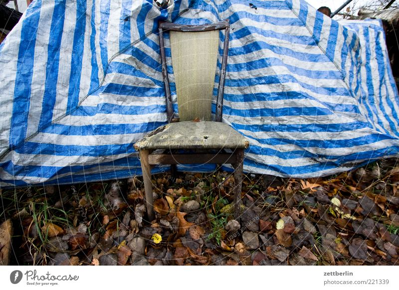 Nature Old Leaf Meadow Autumn Empty Chair Broken Trash Stripe Middle Furniture Trashy Seating Armchair Seat