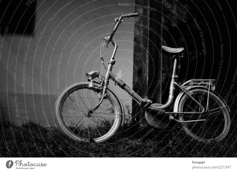Old White Black Dark Meadow Grass Gray Bicycle Wait Retro Wheel Vehicle Tire Bicycle frame Means of transport Vintage car