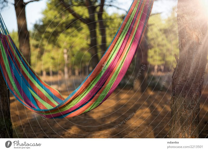 hammock hanging between two trees Lifestyle Relaxation Leisure and hobbies Vacation & Travel Summer Garden Nature Landscape Sunlight Tree Forest Green Red