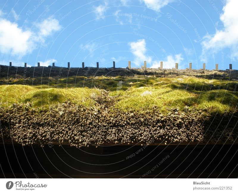 HeavenMoss Nature Landscape Earth Air Sky Clouds Summer Beautiful weather Baltic Sea Hut Building Roof Esthetic Colour photo Exterior shot Structures and shapes