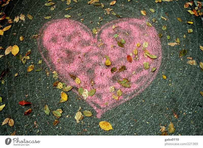autumn heart Environment Autumn Street Love Heart Sidewalk Asphalt Pink Gray Yellow Green Street art Creativity Emotions Graz Affection Deserted