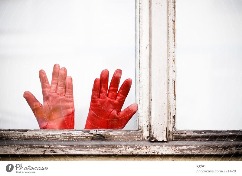 red handles Window Leather Gloves Red Colour photo Exterior shot Deserted Copy Space right Copy Space top Day Window frame Wood Flake off Old Weathered