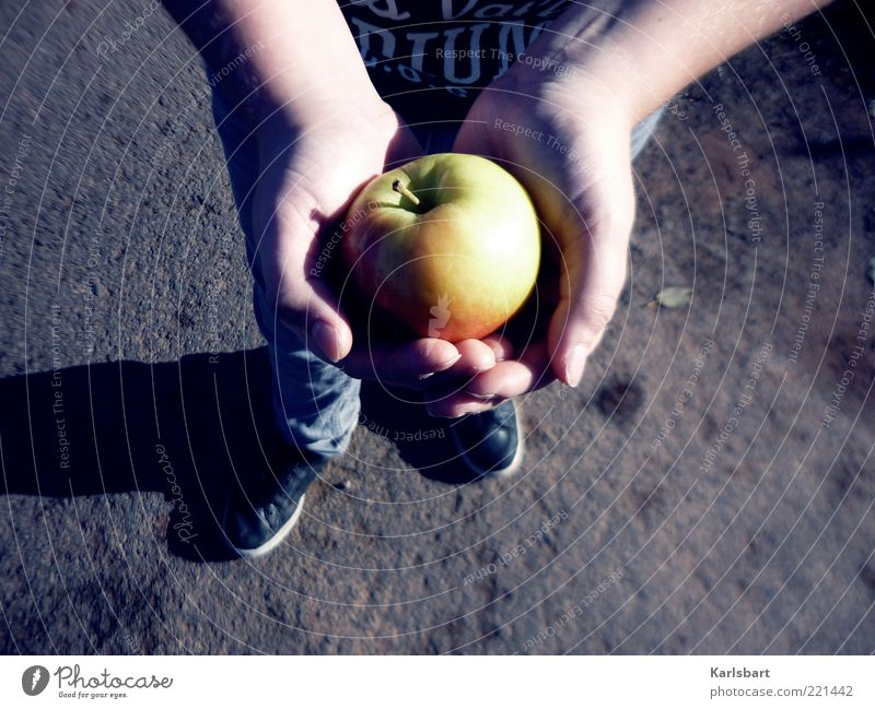 give. take. Food Fruit Apple Nutrition Organic produce Lifestyle Healthy Human being Child Boy (child) Infancy Skin Hand Feet 1 Nature Autumn To hold on Power