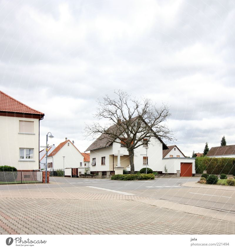 village Sky Autumn Plant Tree Bushes Village Deserted House (Residential Structure) Places Manmade structures Building Architecture Street Crossroads