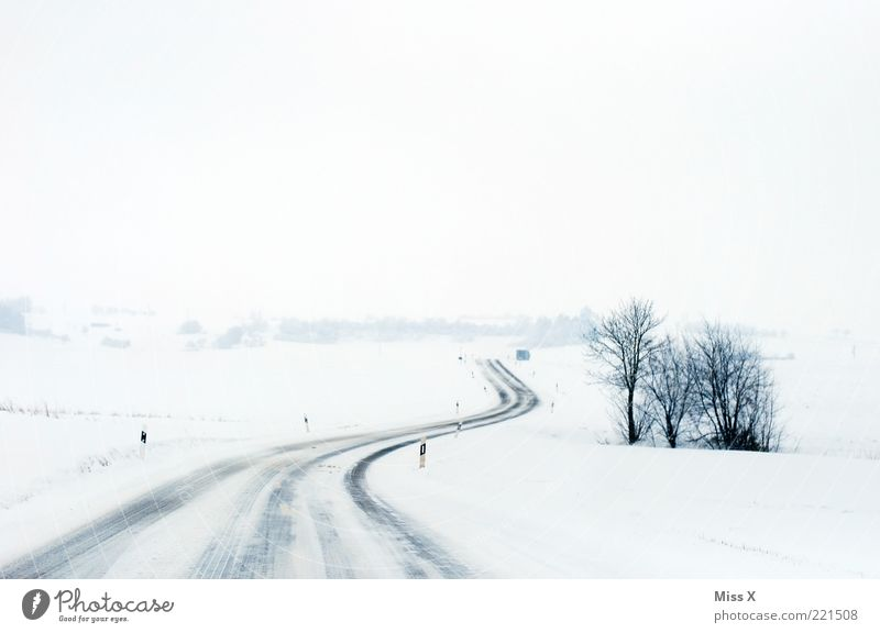 The street Winter Ice Frost Snow Traffic infrastructure Street Lanes & trails Cold White Road safety Bushes Snowscape Landscape Colour photo Subdued colour