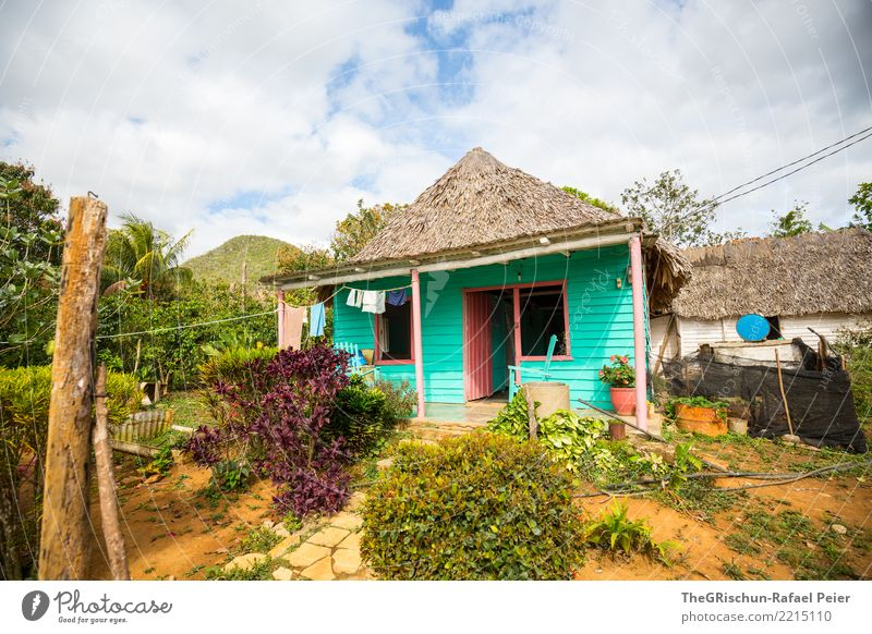 Vinales (Cuba) Environment Nature Village Blue Green Turquoise Multicoloured Life House (Residential Structure) Hut Thatched roof Simplistic Domicile