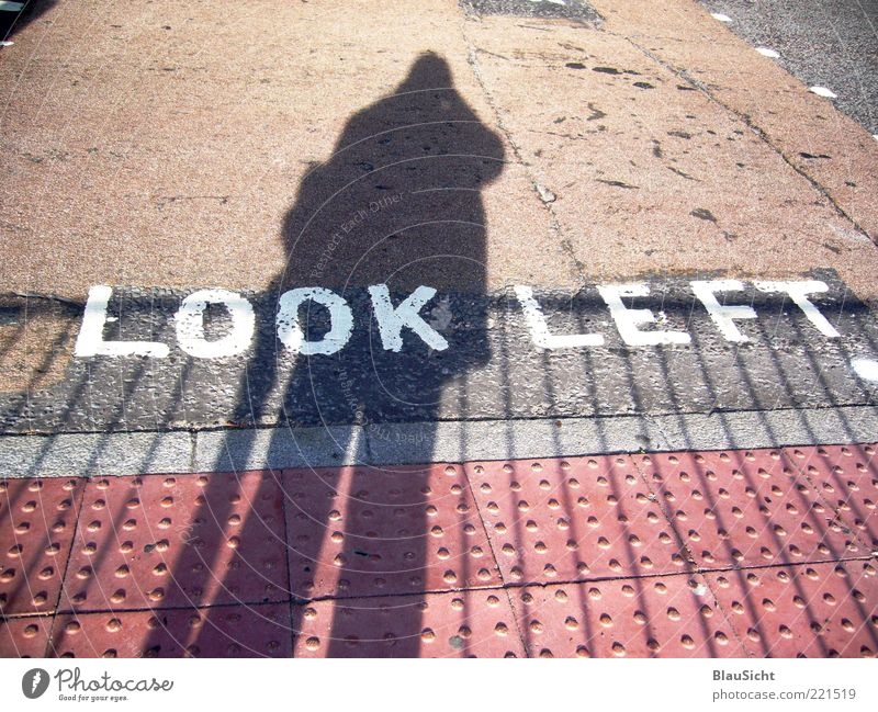 Human being Street Characters Floor covering Asphalt Tar Pedestrian crossing Block capitals